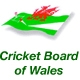 Cricket Board of Wales Clubmark