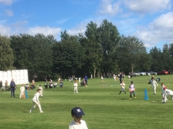 JUNIOR CRICKET THRIVES DURING THE CURRENT TIMES